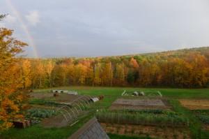 2012 rainbow